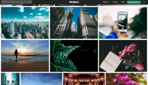 free high quality image stock site