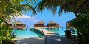 Maldive travel agency