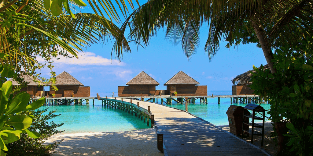 Maldive travel agency